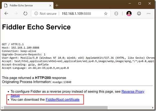 Fiddler Debugging Echo Service